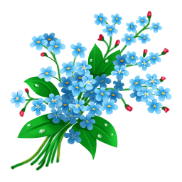 Forget Me Nots